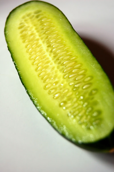 cucumber© by haalo