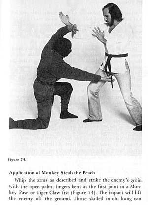 Monkeystealspeach