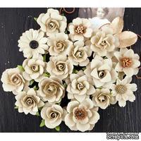 Набор цветов Prima - Coy Flowers Walden - ScrapUA.com