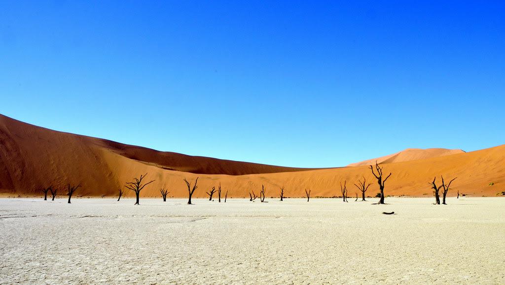 Namibia (381)