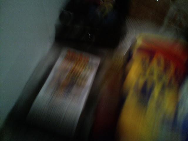 PIC_3002