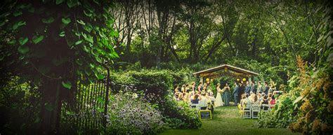 Farm Tour   Camrose Hill Flowers