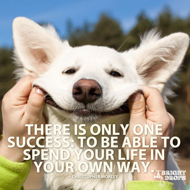 """""""There is only one success: to be able to spend your life in your own way."""" ~Christopher Morley"""