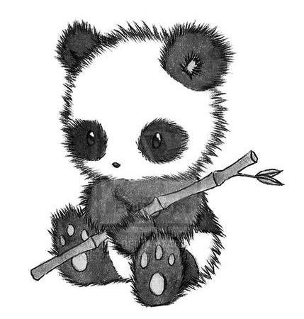 Oso Panda Bebé Tierno Dibujo Imagui