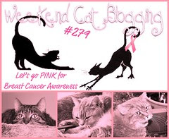 Weekend Cat Blogging is going PINK for Breast Cancer Awareness Month