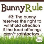 Bunny Rule 3