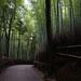2012_Summer_Kansai_Japan_Day4-60