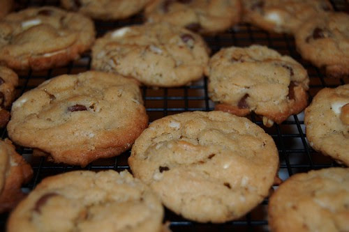 Triple Chocolate Chip Oatmeal Cookies