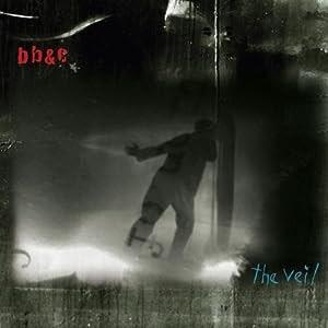 Nels Cline, Tim Berne, Jim Black - The Veil  cover
