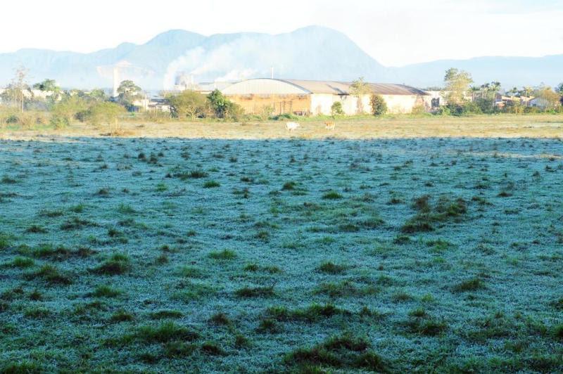Em Bom Retiro, Joinville/SC, a geada deixou o campinho branco:imagem 3