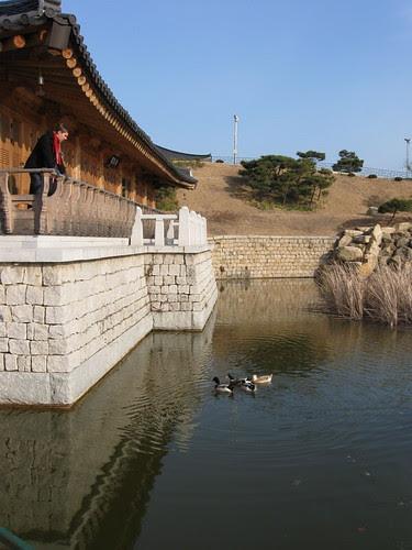 Frozen lake @ Gyeongju National Museum
