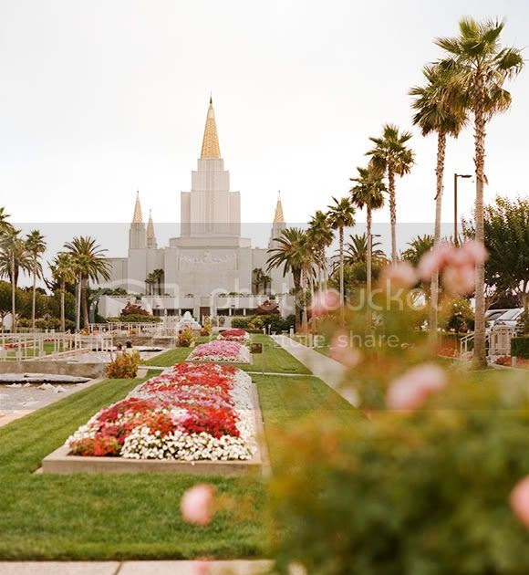 Christine Olson Photography Oakland Ca Lds Temple