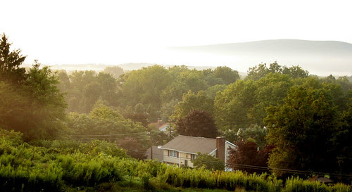 A morning, from my porch