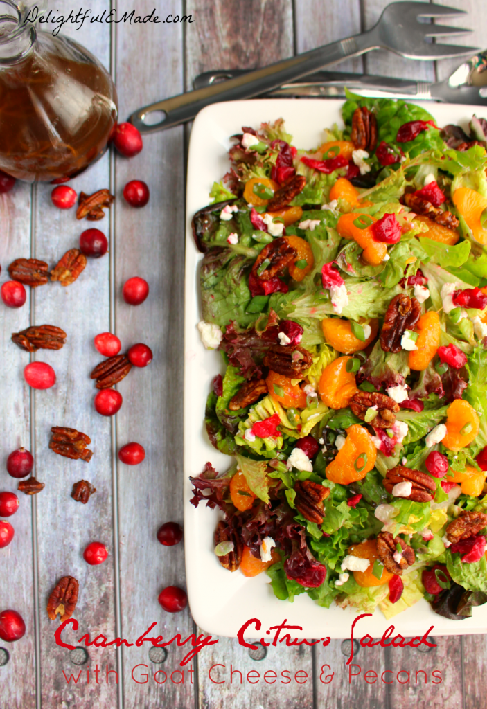 Cranberry Citrus Salad with Goat Cheese & Pecans | from Delightful E Made