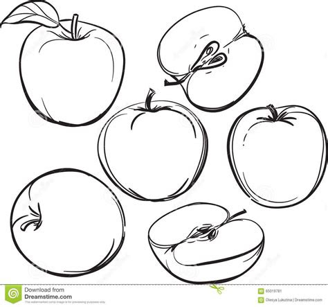 apple  drawing  apples   white background
