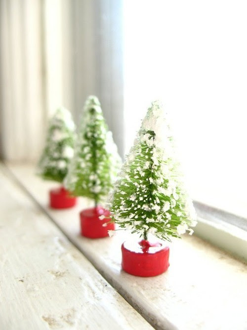 mini-trees in the window