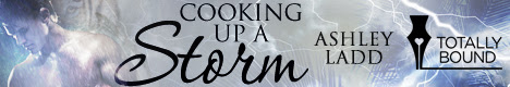 Cooking Storm - Author Banner