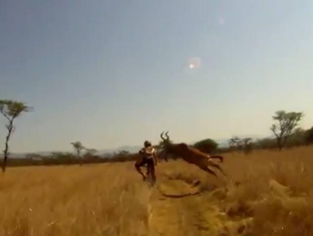 Cena ocorreu na reserva de Albert Falls, na África do Sul.  (Foto: Reprodução)