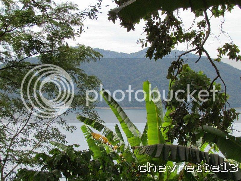 http://i1252.photobucket.com/albums/hh578/chevrette13/Madagascar/IMG_2186Copier_zps115cf5b0.jpg