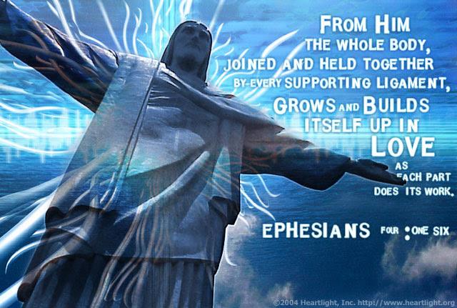 Ephesians 4:16 (89 kb)