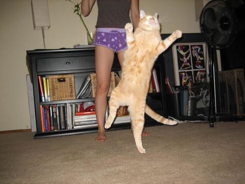 Dancing by hapatxn.