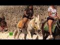 Así obligan a burros a transportar turistas obesos cuesta arriba en Grecia
