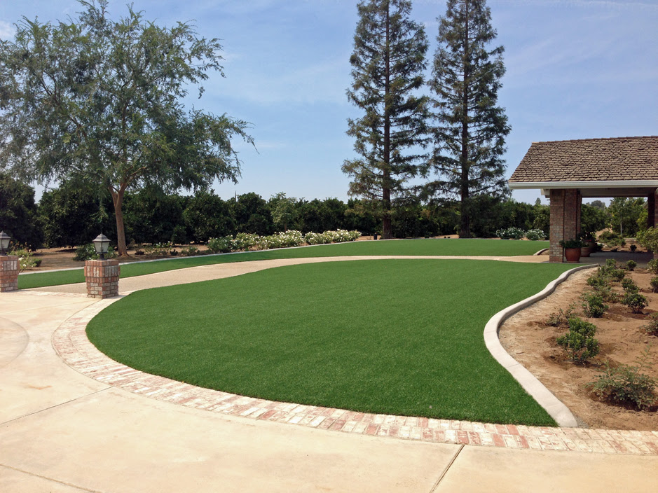 Artificial Turf Stanfield Arizona Roof Top Front Yard Landscaping Ideas