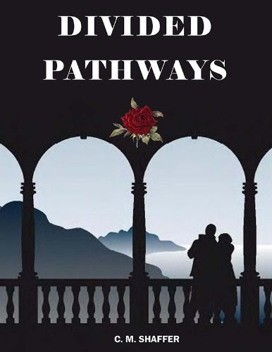 Divided Pathways by Cathy Williams