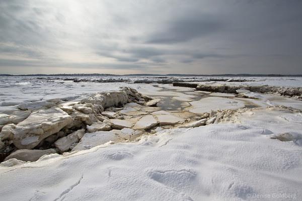 chunks of ice, salt marsh, Park River National Wildlife Refuge