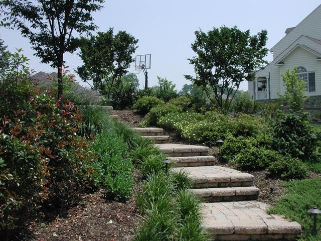Landscaping Ideas for Steps On a Hill