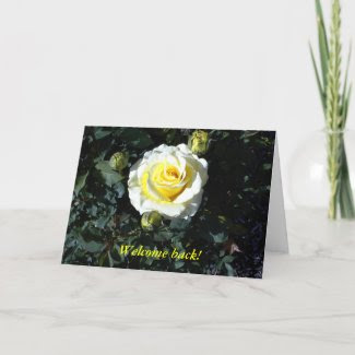 Welcome Back Card with Yellow Roses card