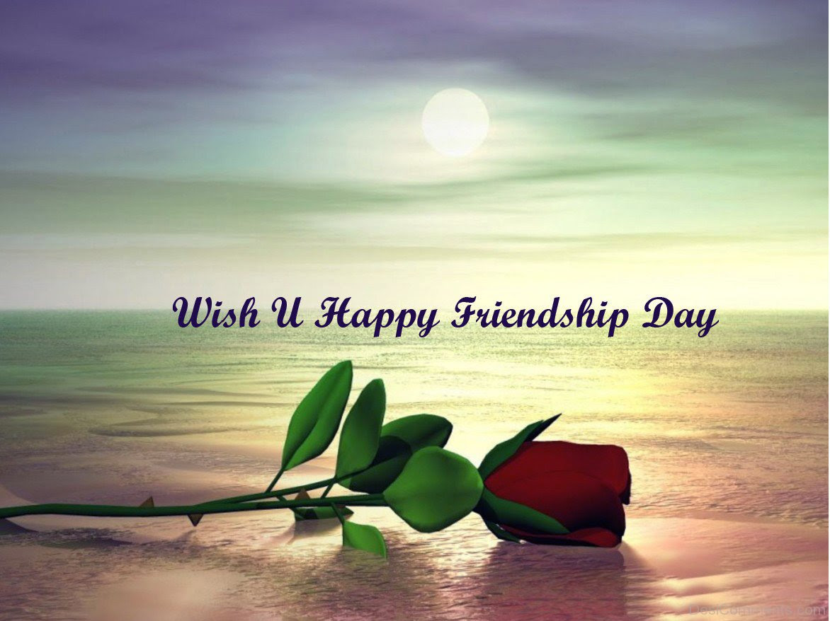 Wish You Happy Friendship Day
