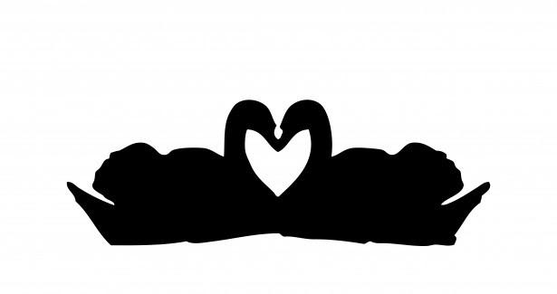 Swans Love Heart Clipart