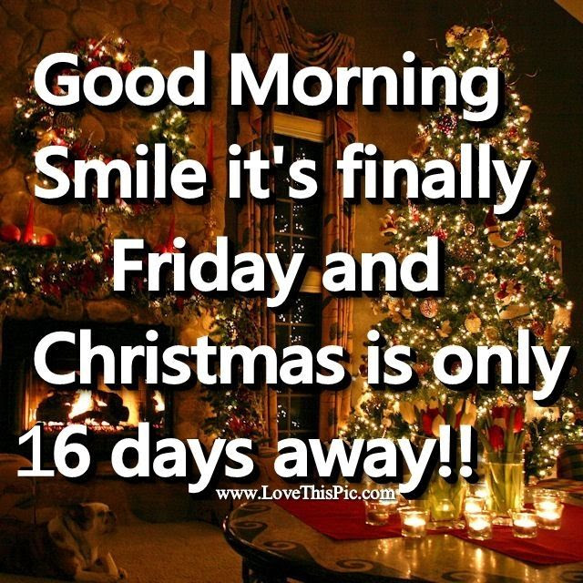 Good Morning Friday Christmas Is 16 Days Away Pictures Photos And