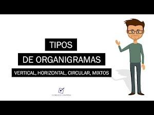 Tipos de organigramas | Vertical, Horizontal, Circular, Mixtos