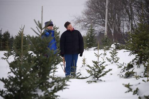 Great Tree Hunt '09