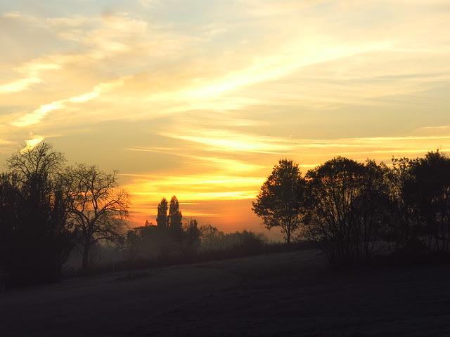 Parliament Hill Fields at Dawn