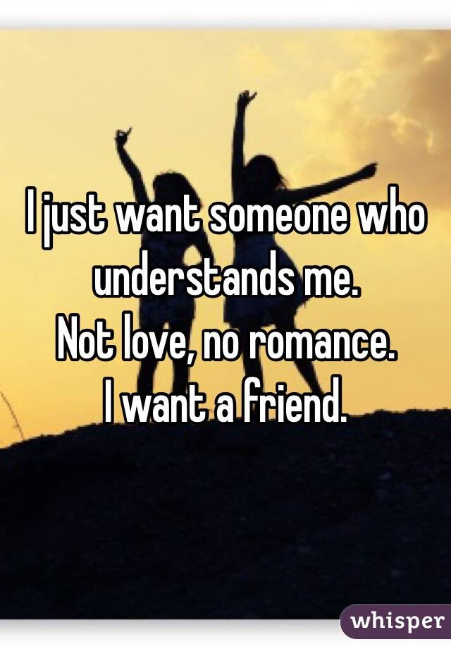 I Just Want Someone Who Understands Me Not Love No Romance I Want
