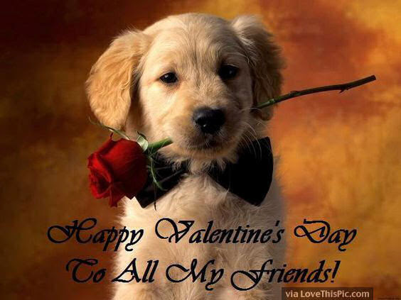 Image result for To All My friends on valentine's day