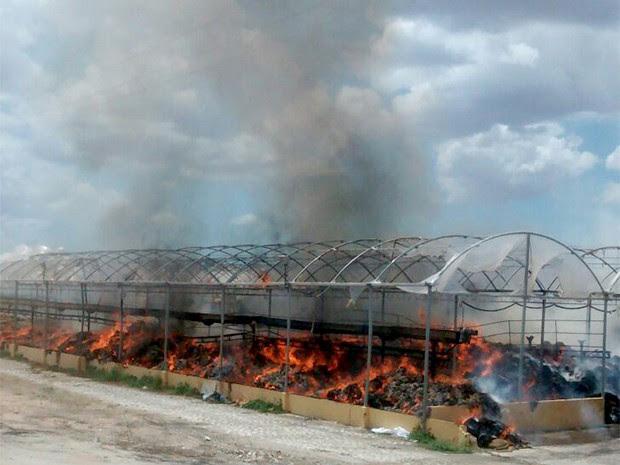Princípio de incêndio foi registrado no início da tarde desta quinta-feira (3), em Mossoró (Foto: Nilsin Ferreira/ Passando na Hora)