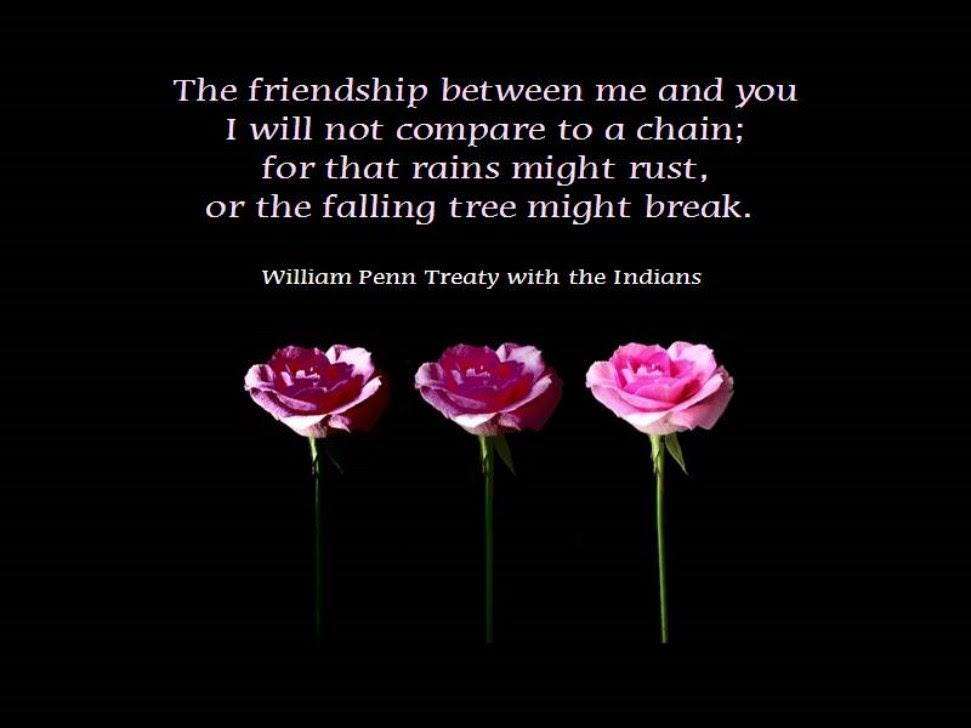 30 Best Friendship Quotes