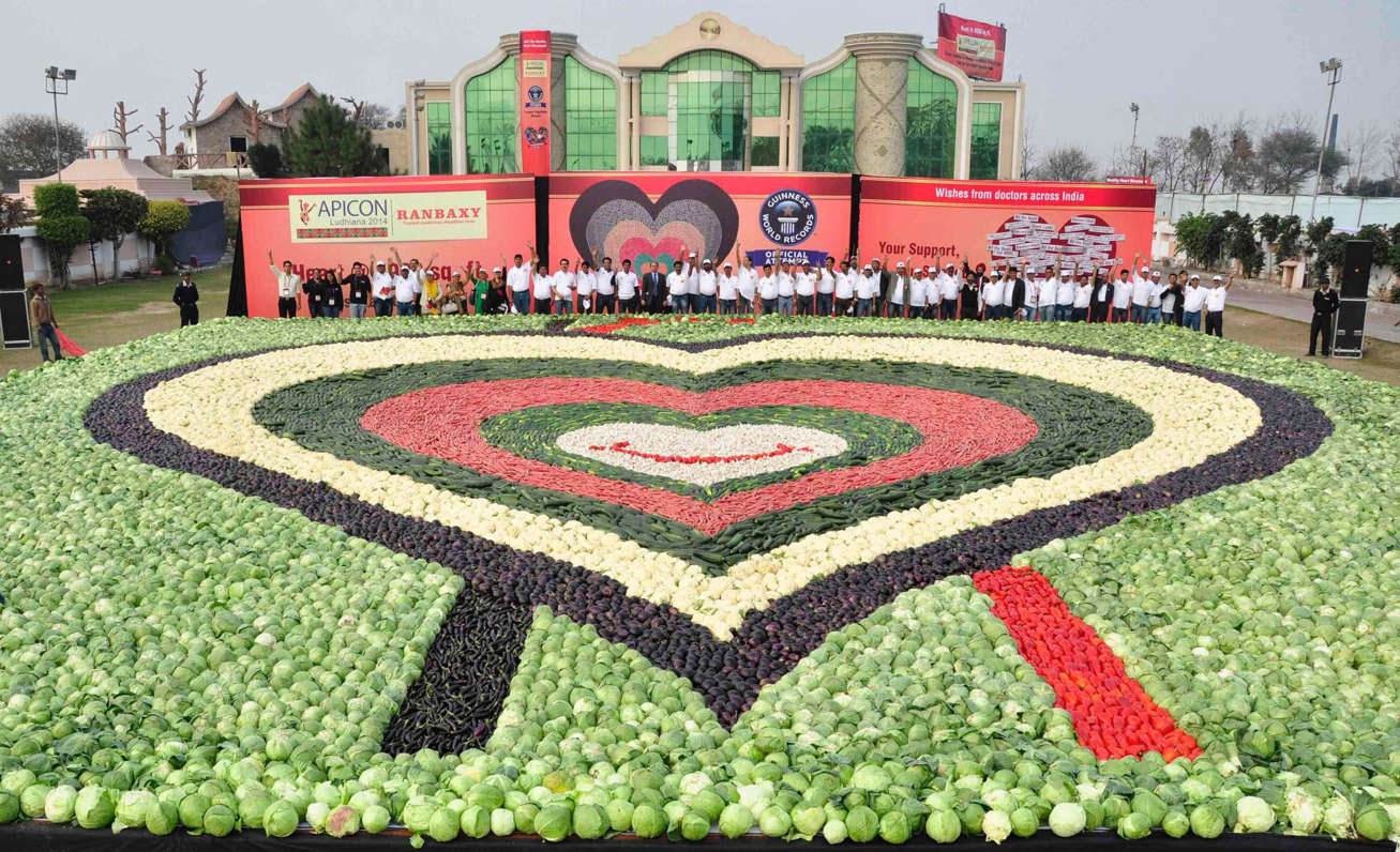 A mosaic made up of vegetables in Punjab, India, on February 21, 2014 set a new Guinness World Records of the largest vegetable mosaic, beating the existing record set by Japan. The participants created the heart-shaped mosaic measuring 480 square metres, using about 19,825 kgs of vegetables, to promote healthy eating for healthy heart.