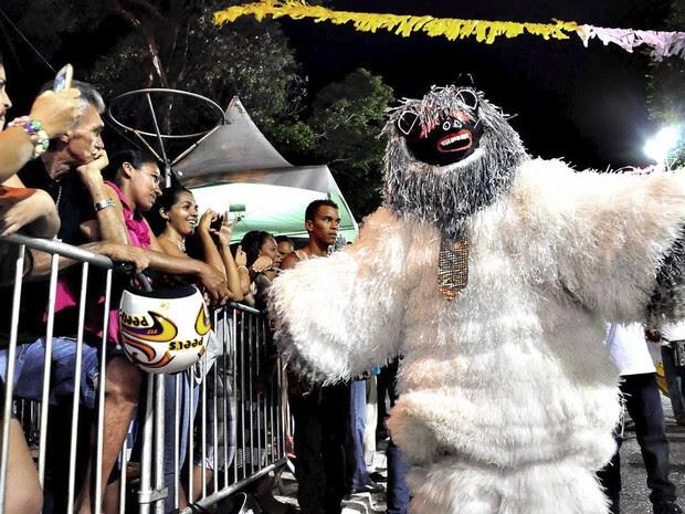Ursos interagiram com o público na Duarte da Silveira (Foto: Deyse Euzébio/Secom-JP)