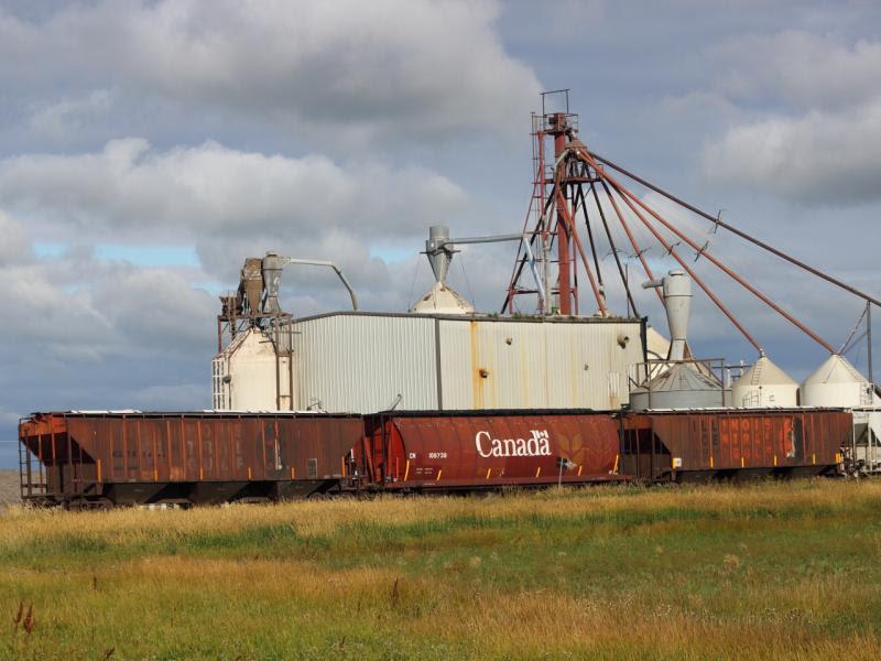 Grain hoppers at Rowatt