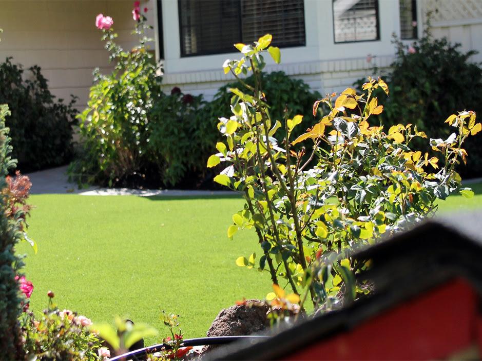 Best Artificial Grass Danbury, Connecticut Rooftop, Front ...