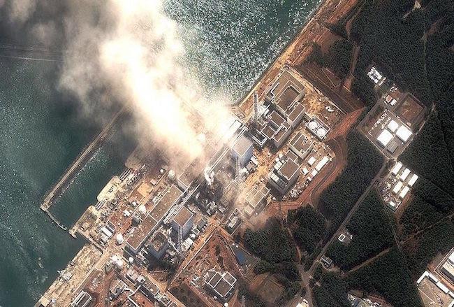 HELEN CALDICOTT: The Fukushima nuclear meltdown continues unabated