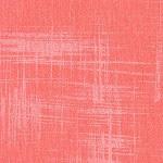 Painters Canvas Peach