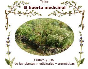 El-huerto-medicinal