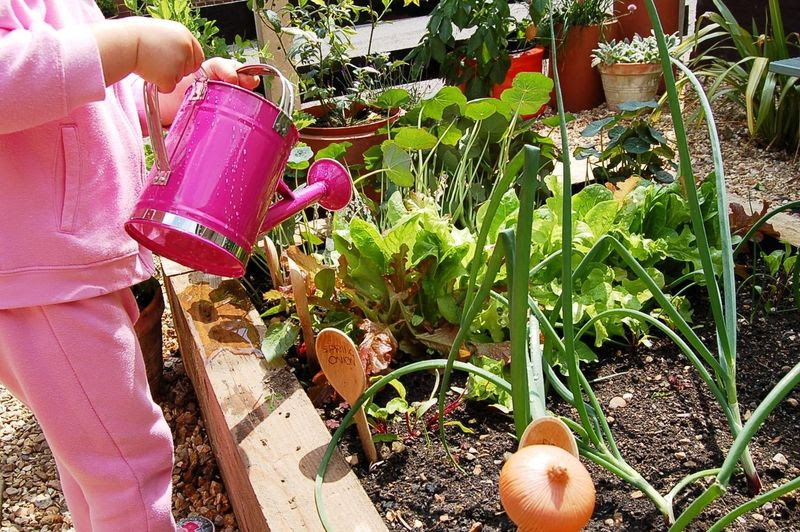 Nursery School Garden Ideas | Architecture Decorating Ideas