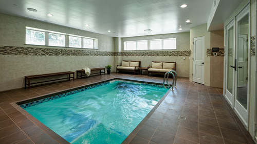 Really Cool Basement Interior Design Photos - Basement Indoor Heated Pools | Live Love in the Home